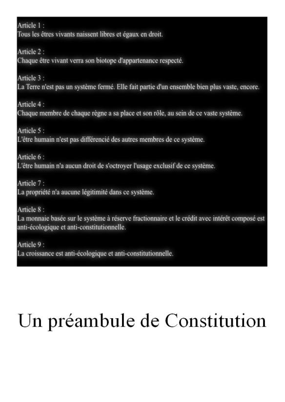 Ma première tentative, pour un début de Constitution.